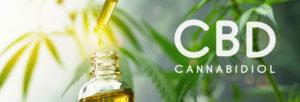 Les utilisations de l'huile de CBD